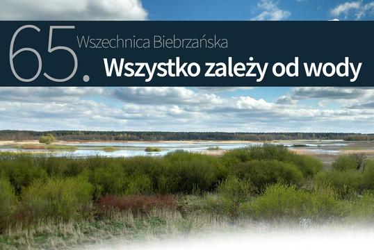 Obraz na stronie 65_wszechnica_2018-1.jpg